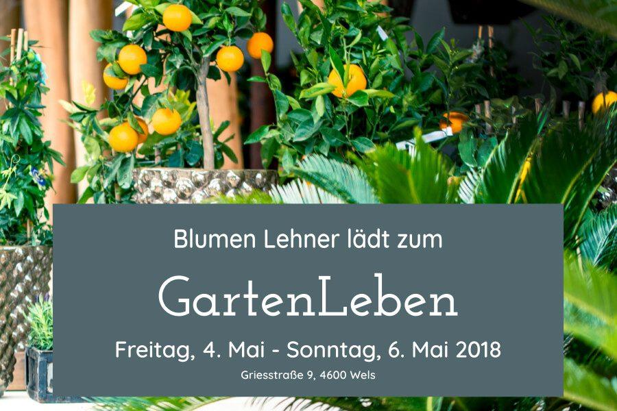 GartenLeben 2018